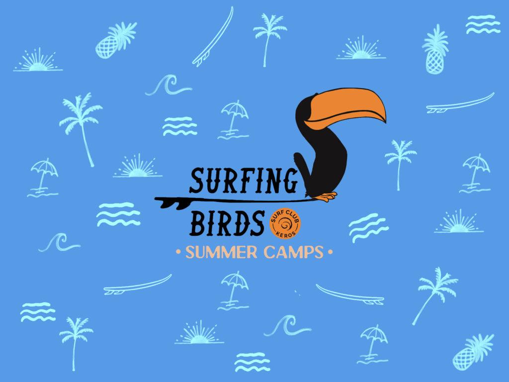 surfing birds banner with logo